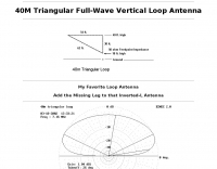 40 M. triangular full wave  vertical loop