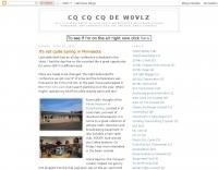 DXZone W0VLZ Blog