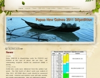 DXZone P29VCX Web Site