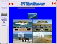 CY0 DXpedition 2011