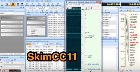 DXZone SkimCC11