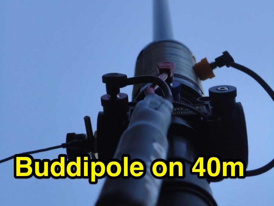 DXZone Buddipole vertical on 40m