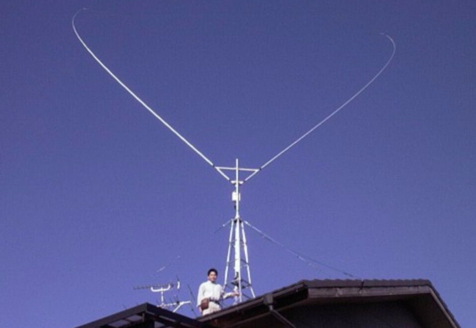 DXZone HF multi-band Delta loop antenna
