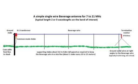DXZone The Single Wire Beverage Antenna