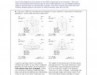 DXZone The G5RV patterns