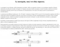 Morgain antenna by I1CRA