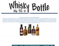 Whisky Bottle 26TE11
