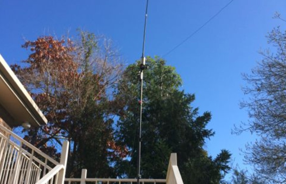 80m vertical buddistick